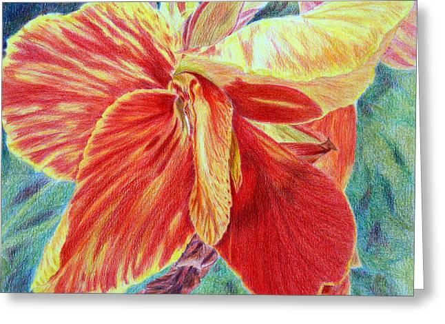 Canna Lily Greeting Card by Tina Storey