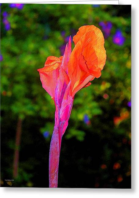 Canna Greeting Cards - Canna Lily with Althea Greeting Card by Fred Jinkins