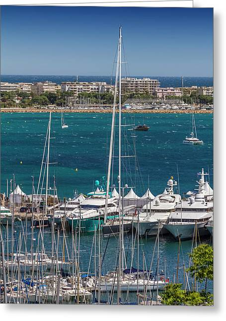 Cannes Harbor And Croisette Greeting Card by Melanie Viola