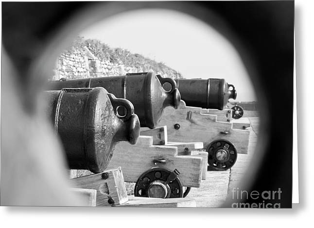 Cannons Greeting Card by Terri Waters