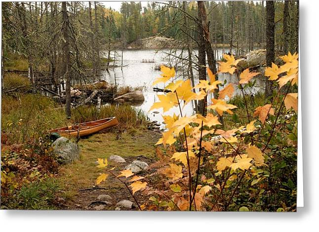 Autumn Landscape Photographs Greeting Cards - Canoe at Little Bass Lake Greeting Card by Larry Ricker
