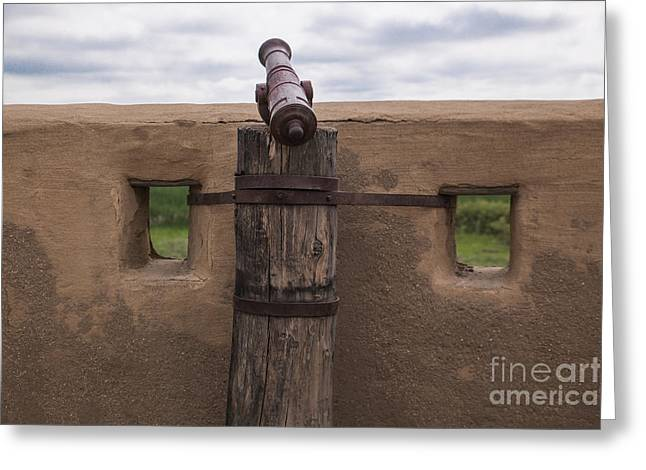 Historic Site Greeting Cards - Canon at the Fort Greeting Card by Lynn Sprowl