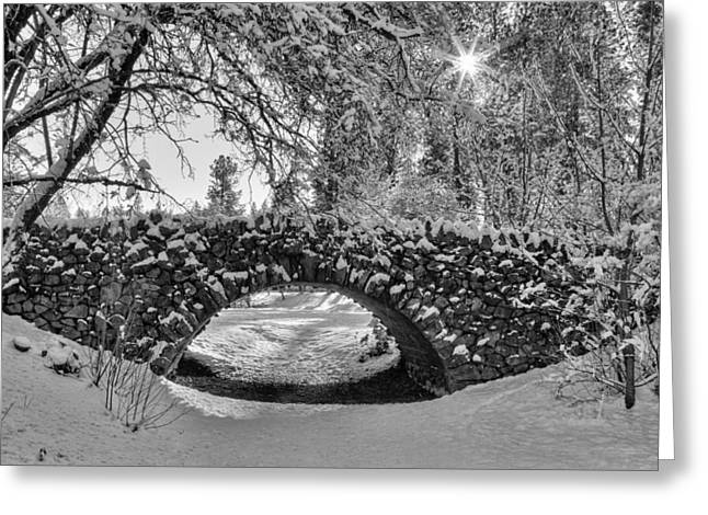 Spokane Greeting Cards - Canon Hill Park Winter - Black and White Greeting Card by Mark Kiver