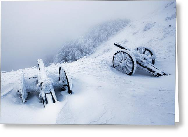 Guns Photographs Greeting Cards - Canons Greeting Card by Evgeni Dinev