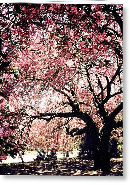Prospects Greeting Cards - Canopy of Blossoms Greeting Card by Natasha Marco