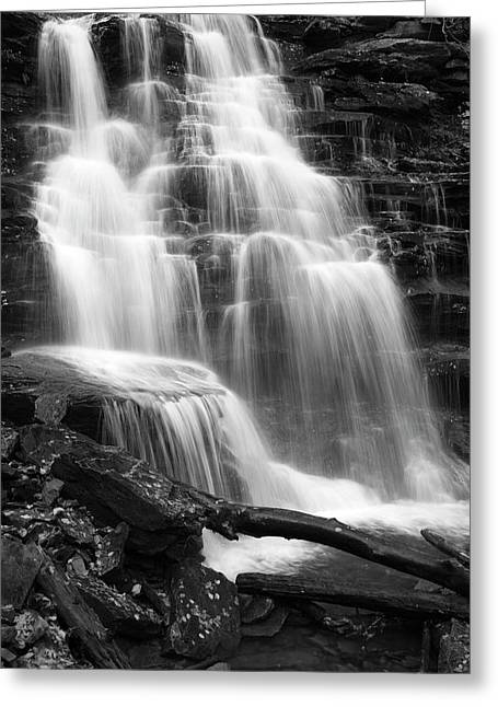 White River Scene Greeting Cards - Canyon Cascade Wilderness Waterfall Greeting Card by John Stephens