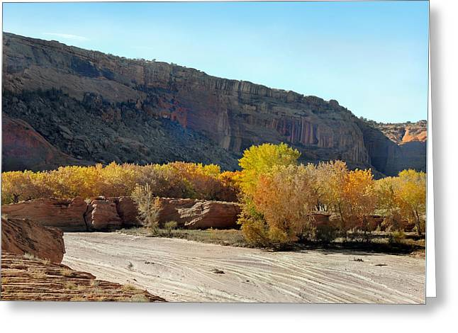 Cave Creek Cowboy Greeting Cards - Canyon Highway Greeting Card by Gordon Beck