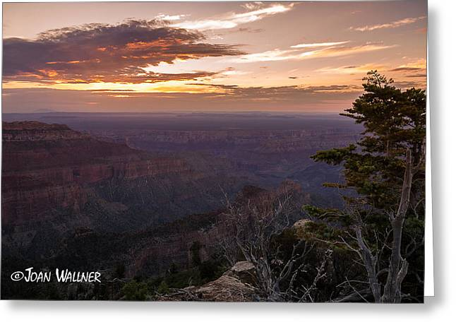 Shades Of Red Greeting Cards - Canyon Sunrise Greeting Card by Joan Wallner
