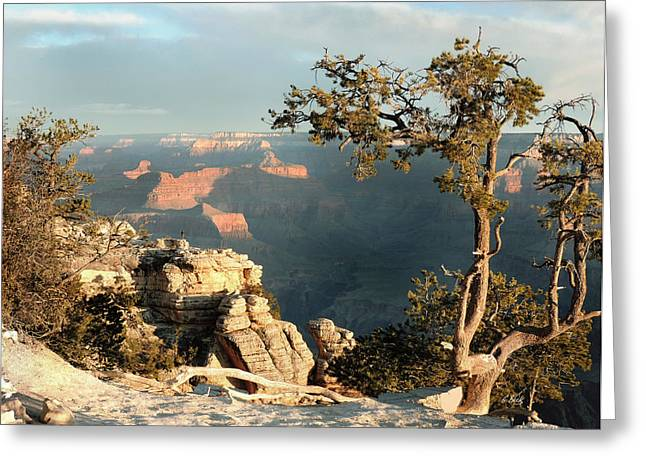 Cave Creek Cowboy Greeting Cards - Canyon View Greeting Card by Gordon Beck