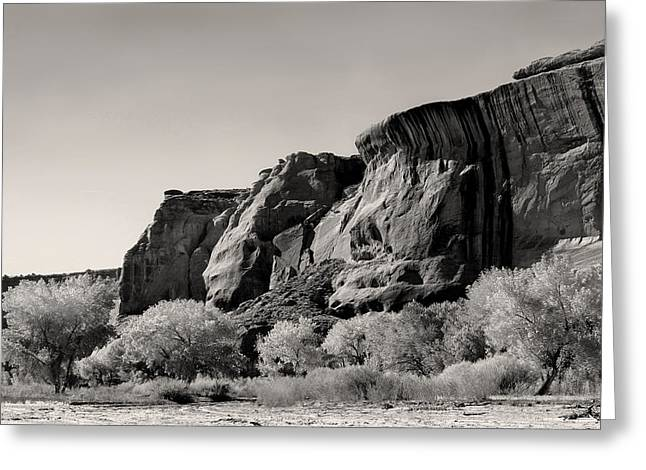 Caves Greeting Cards - Canyon Walls Monochrome Greeting Card by Gordon Beck
