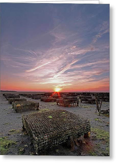 Cape Cod Mass Greeting Cards - Cape Cod and the Islands Greeting Card by Juergen Roth