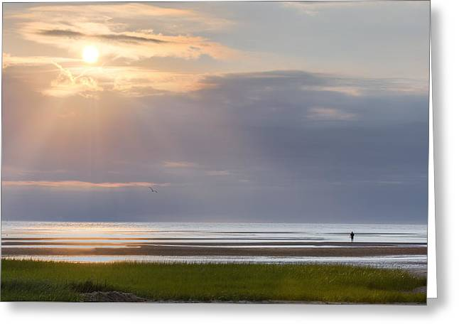 Light Rays Greeting Cards - Cape Cod First Encounter Beach Greeting Card by Bill Wakeley