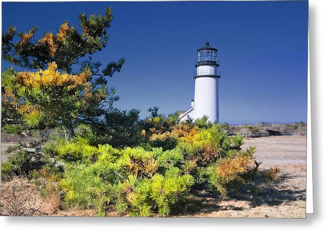 Beach House Decor Posters Greeting Cards - Cape Cod Highland Light Greeting Card by Dapixara Art