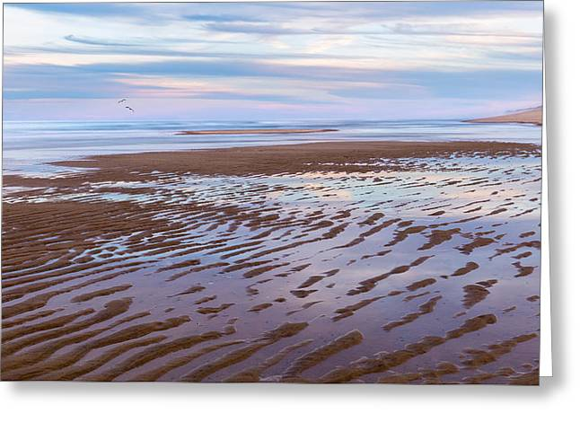 Cape Cod Low Tide Sunset Greeting Card by Bill Wakeley