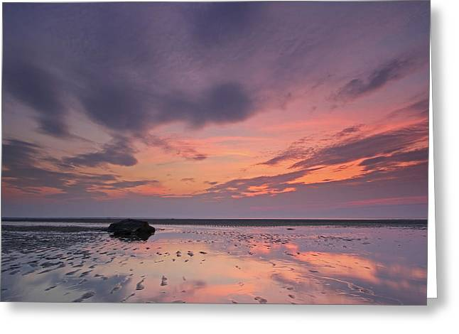 Cape Cod Mayflower Beach Greeting Card by Juergen Roth