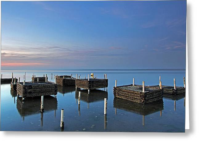 Cape Cod Oyster Farm Greeting Card by Juergen Roth