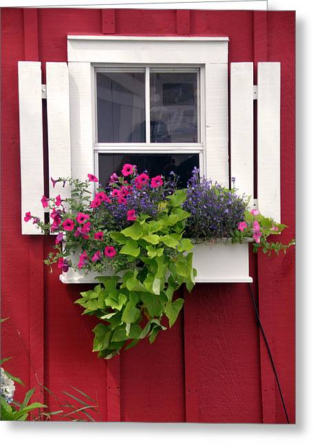 Ocean. Reflection Greeting Cards - Cape Cod Window Box Greeting Card by Jean Hall