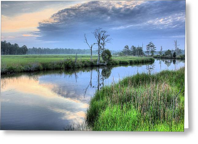 Cape Fear River Greeting Cards - Cape Fear Morning Greeting Card by JC Findley