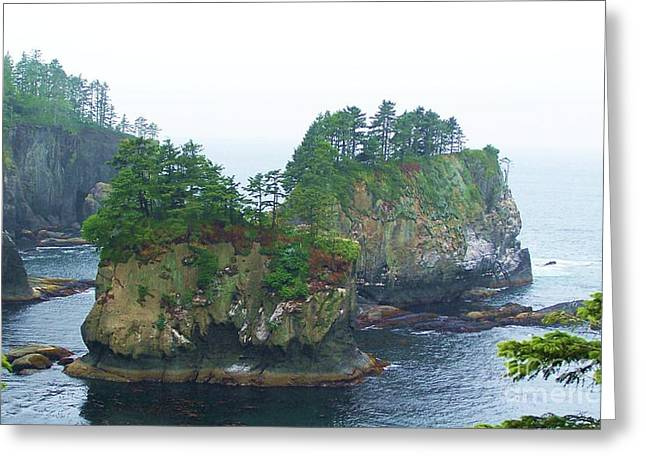 Cape Flattery Greeting Cards - Cape Flattery Islands Greeting Card by Mary Dunham Walters