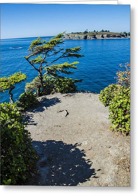 Cape Flattery Greeting Cards - Cape Flattery Greeting Card by Pelo Blanco Photo