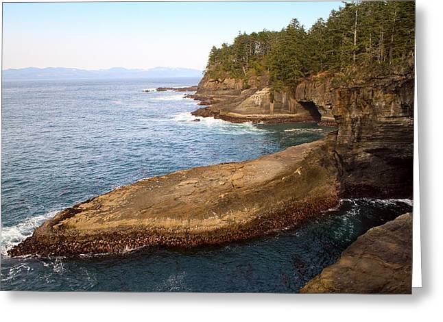 Cape Flattery Greeting Cards - Cape Flattery Washington  Greeting Card by Stacey Lynn Payne