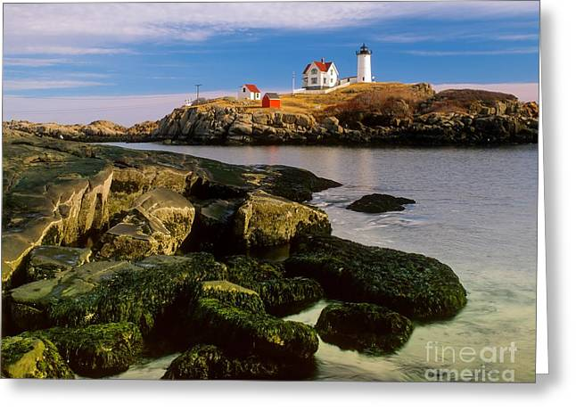 Cape Neddick Greeting Cards - Cape Neddick Lighthouse Greeting Card by Larry Knupp
