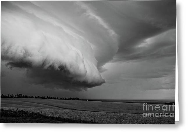 Cape Tyron Vortex Black And White Greeting Card by Edward Fielding