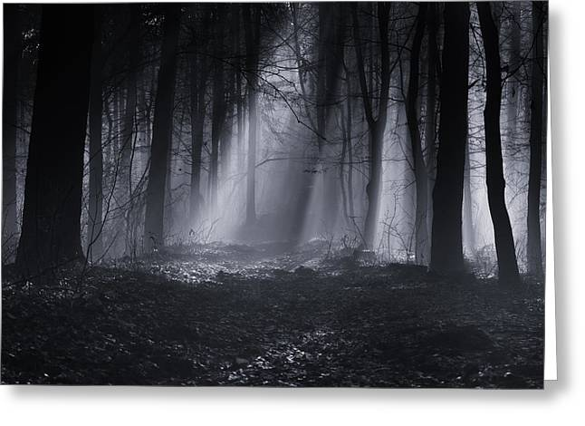 Mist Greeting Cards - Capela Forest Greeting Card by Julien Oncete