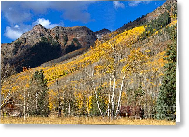 Fall Colors Greeting Cards - Capitol City Greeting Card by Jim Garrison