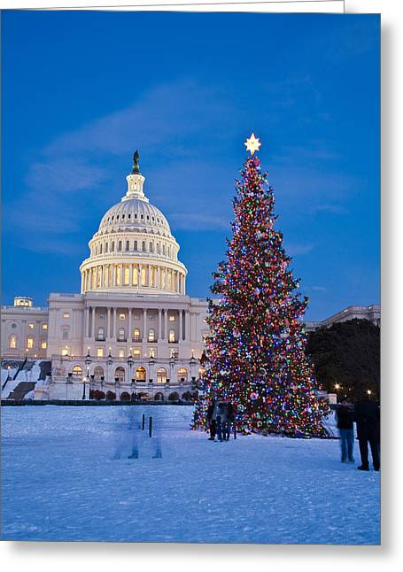 Best Sellers -  - Installation Art Greeting Cards - Capitol Christmas Tree Greeting Card by Richard Nowitz