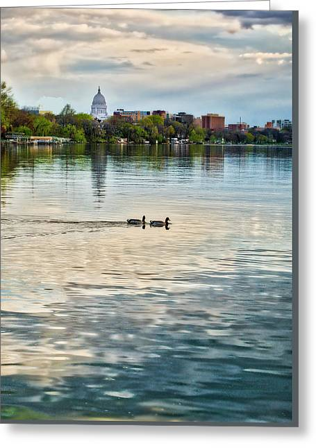 Capitol -madison-wisconsin From Tenney Park Greeting Card by Steven Ralser