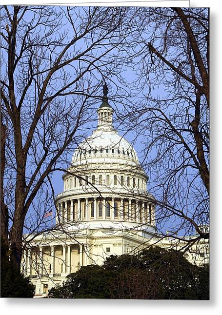 U.s. Capitol Greeting Cards - Capitol Greeting Card by Mitch Cat