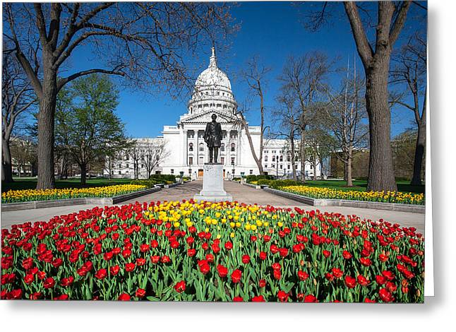 Capitol Tulips Greeting Card by Todd Klassy