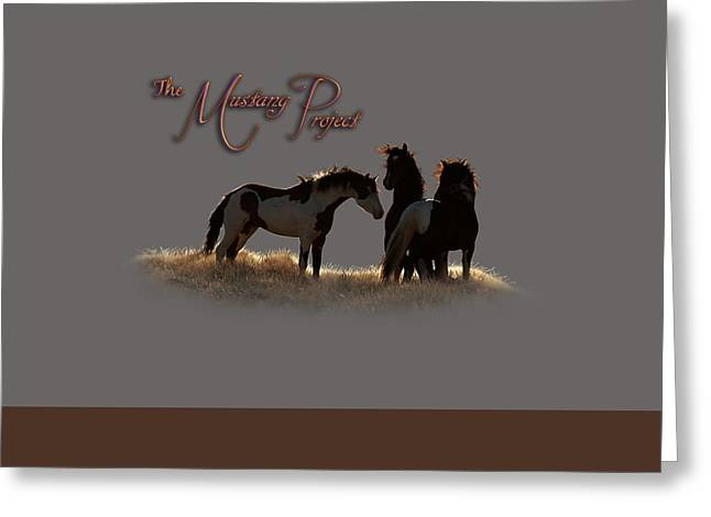 The Horse Greeting Cards - Captian in the Storm Greeting Card by Tracy Mohr