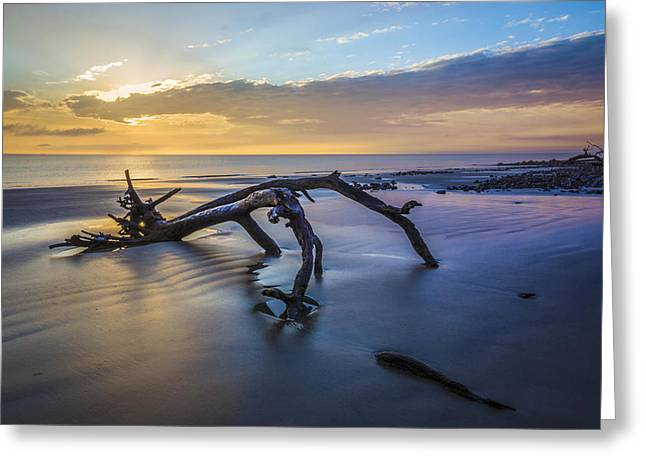 Ocean Shore Greeting Cards - Captured Greeting Card by Debra and Dave Vanderlaan