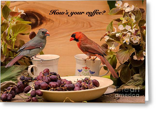 Cup Tapestries - Textiles Greeting Cards - Cardinal Coffee Greeting Card by James Hennis