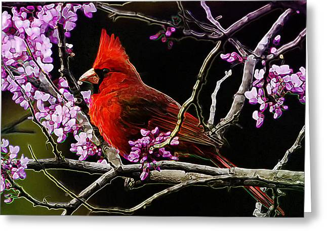 Pink Flower Branch Photographs Greeting Cards - Cardinal in Bloom Greeting Card by Bill Tiepelman