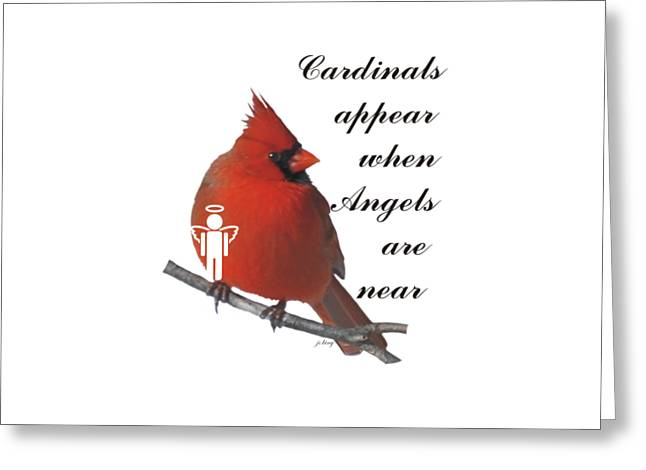 Apparel Greeting Cards - Cardinals and Angels Greeting Card by Jacquie King