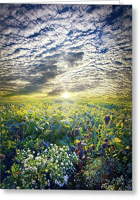 Cares Away Greeting Card by Phil Koch