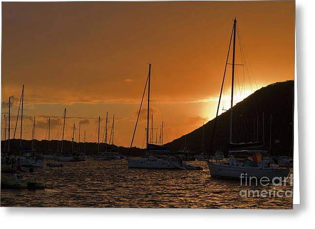Caribbean Dawn Greeting Card by Louise Heusinkveld