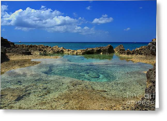 Tidal Photographs Greeting Cards - Caribbean Pool With A View Greeting Card by James Brooker