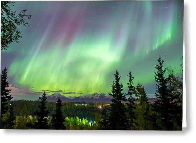 Caribou Greeting Cards - Caribou Skies Greeting Card by Ron Day