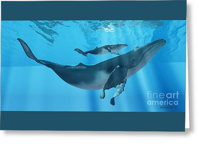 Sea Creature Pictures Greeting Cards - Caring Mother Humpback Greeting Card by Corey Ford