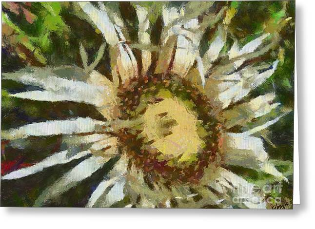 Featured Art Greeting Cards - Carline Thistle Greeting Card by Dragica  Micki Fortuna
