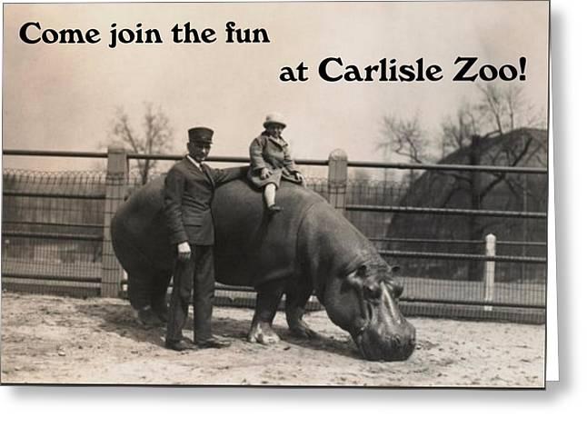 Carlisle Zoo Greeting Card by Justin Farrimond