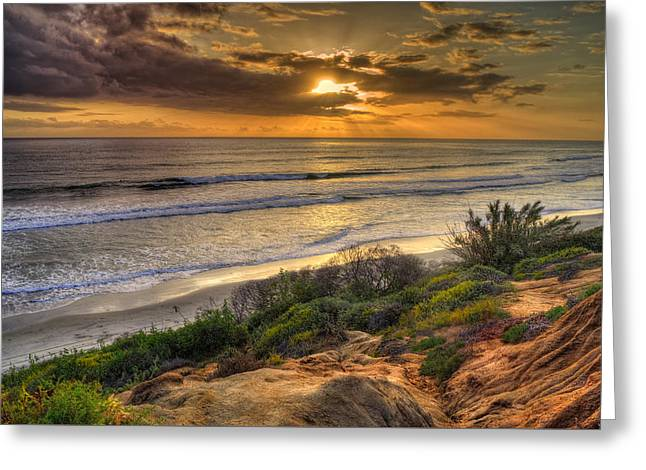 Ocean Plants Greeting Cards - Carlsbad Shore Greeting Card by Stephen Campbell