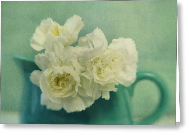 carnations in a jar Greeting Card by Priska Wettstein