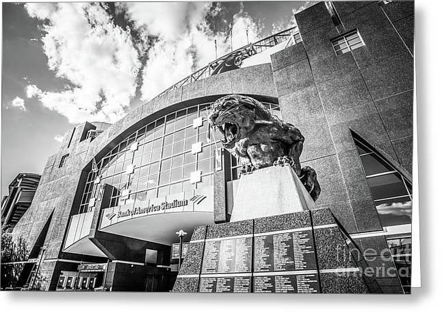 Carolina Panthers Stadium Black And White Photo Greeting Card by Paul Velgos