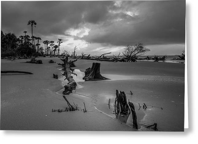 Docked Sailboats Greeting Cards - Carolina Storm Threatens  Greeting Card by Laurie Martin