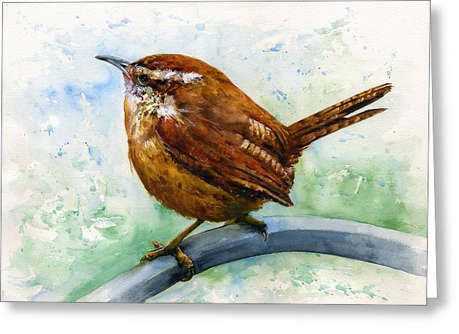 Carolina Wren Large Greeting Card by John D Benson